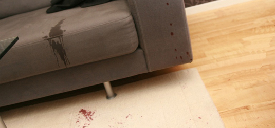 upholstery Cleaning Denver