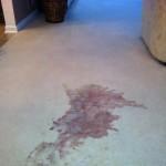 carpet wine